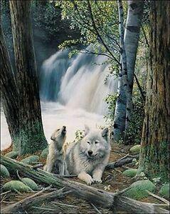 Details Zu Kevin Daniel First Song Keilrahmen Bild Leinwand Wolf Baby Wald Wasserfall