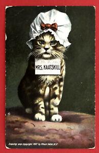 Kuenstler-AK-Katzen-1907-Katze-in-Menschengestalt-Mrs-Kaatskill-67684