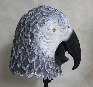 Pájaro Halloween Disfraz en Máscara Parte Gris Látex Africano Arriba de Loro la xqvUP6z