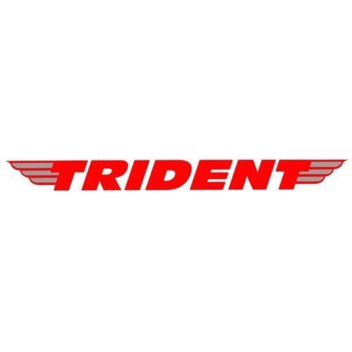 """5 Point Bit Set T111600 TRIDENT OUTILS 9 Pièce 1//4/"""" Lecteur TORX STAR indéréglable Carburateur"""