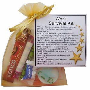 Work Survival Kit - work gift, SECRET SANTA gift, funny ...