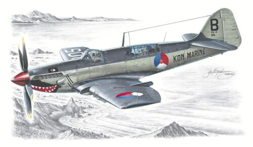 Special Hobby 100-SH48041-1:48 Fairey Firefly Mk.IV//V