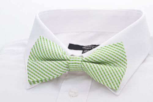 Scott Allan Mens 100/% Silk Plaid Bow Tie Green//White Mens Tie