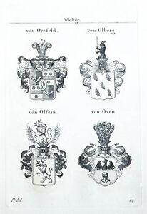 1837-4-Wappen-von-Oesfeld-Olberg-Olfers-Osen-Kupferstich-Tyroff