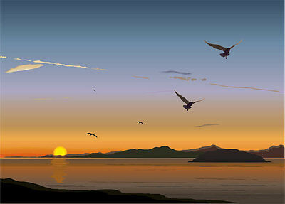 Mediterranean Beach Birds Sunset Full Wall Mural Photo Wallpaper Home Decal Kids