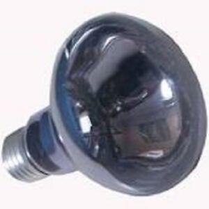 LAMPADA-DIURNA-DAYLIGHT-150-WATT-PER-RETTILI-TARTARUGHE