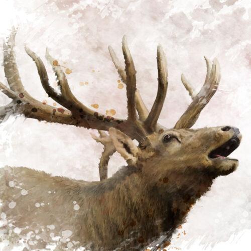 ELK ANIMAL ART VINTAGE METAL SIGN HOME BAR TIN WALL PLAQUE MAN CAVE