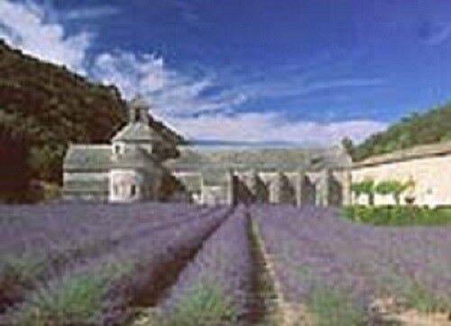 Tenor- Bass-Blockflöte - Blockflötenwoche in der Provence - SENIOREN-RABATT