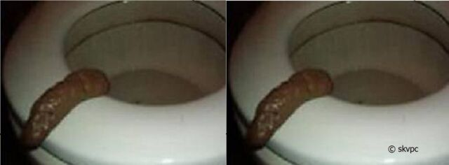 2 Fake Prank Human #2's Turd Poo Party Pooper Crap Novelty GAG GIFT FUNNY JOKES