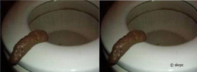 2 Fake Prank Human #2's Turd Poo Party Pooper Crap Novelty GAG GIFT FUNNY JOKES