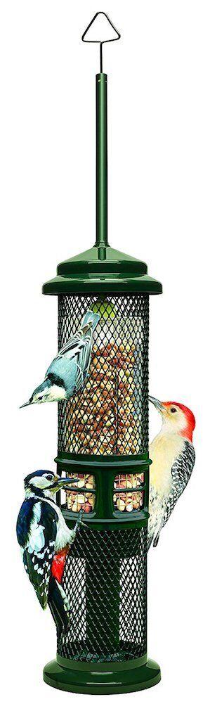 Brome Bird Cochee-gc-Ardilla Buster Cacahuete Alimentador -