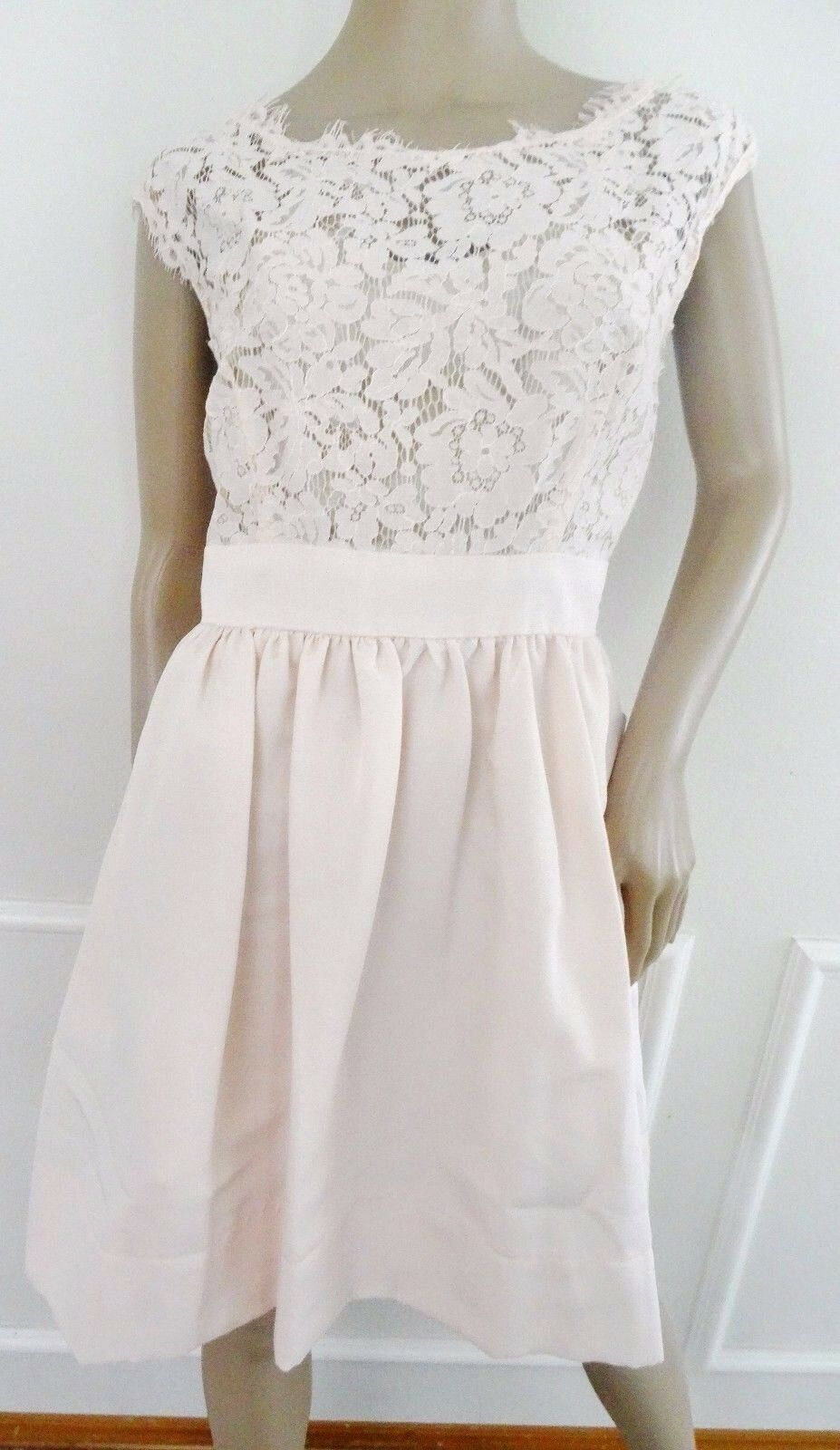 Nwt Eliza J Fit & Flare Lace Scalloped Cocktail Dress Sz 14P Petite Blaush