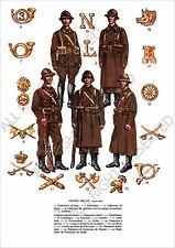 PLANCHE UNIFORMS PRINT WWII Armée Belge Belgique Belgian Army Belgium 1939