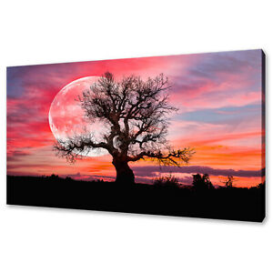 LONELY-TREE-WITH-A-MOON-AT-SUNSET-COLOURFUL-SKY-CANVAS-PRINT-WALL-ART-PICTURE