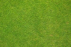Grass Football Pitch Print Background Wallpaper Edible A4 Icing