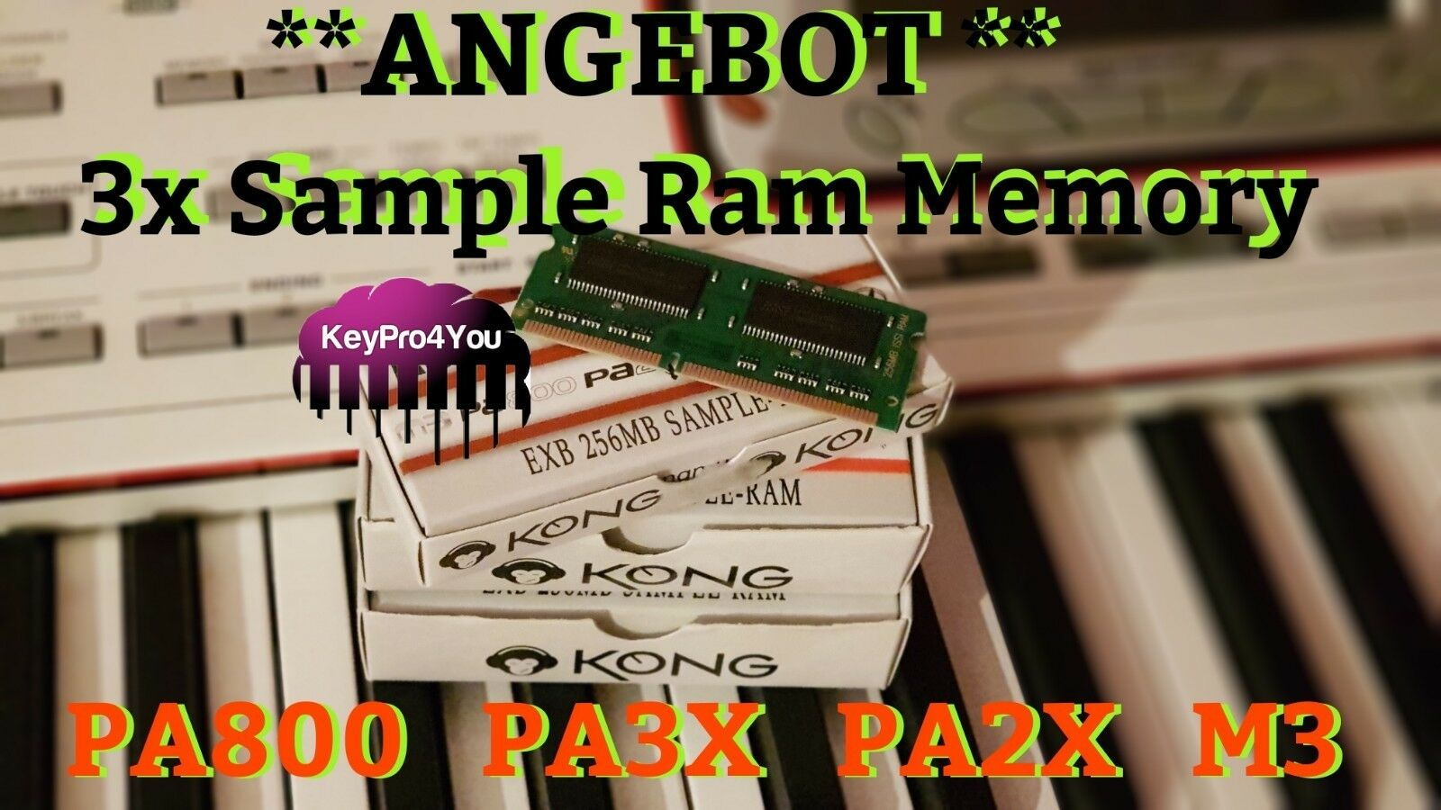 3x Korg Sample Ram Memory  pa800 pa2x pa3x m3 Keyboard Speichererwieterung TOP