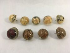 Vintage Handmade Decorative Push Pin Tacks Seeds Amp Beans In Lucite Set Of 9