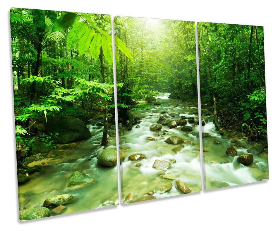 verde foresta PAESAGGIO FIUME triplicare CANVAS Wall Art Box incorniciato PICTURE