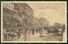 Belluno Feltre Campogiorgio Mercato Bovino cartolina QT1284