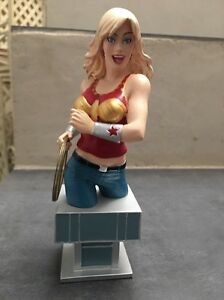 WONDER-GIRL-TEEN-TITANS-MINI-BUST-1897-3000-Women-Of-The-DC-Universe-RARE