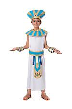 Gojoy shop- Disfraz de Egipcio para Niño y Niñas Carnaval (4 Tallas...