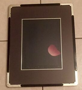 Kozo-Inoue-034-Petale-034-Screen-Print-Black-Paper-Signed-amp-Numbered