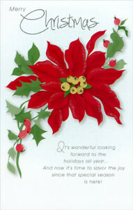 Christmas Card Greetings.Details About Poinsettia Christmas Card Greeting Card By Freedom Greetings