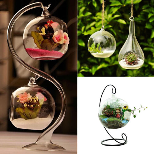 048E Cute Clear Hole Glass Angel Shape Flower Plant Hanging Vase Hydroponic Deco