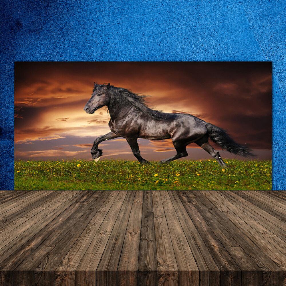 Crédence de cuisine en verre Panneau 120x60 Animaux Cheval Noir Prairie
