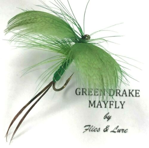 3,4 or6 Trout Fly Fishing DRY Flies GREEN DRAKE MAYFLY Choose Quantity /& hook