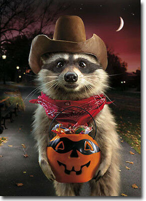 Raccoon Cowboy Standout Stand Out Pop Up Halloween Card by Avanti Press