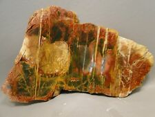 Cherry Creek Jasper Rough Rock Stone Slab Cabbing Cutting Red Creek China #1