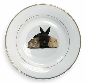 Rabbit-and-Guinea-Pigs-Print-Gold-Rim-Plate-in-Gift-Box-Christmas-Presen-AR-9PL