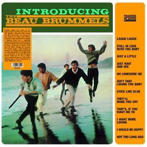 INTRODUCING-THE-BEAU-BRUMMELS-1965-LP-UK-IMPORT-034-LAUGH-LAUGH-034-034-JUST-A-LITTLE-034