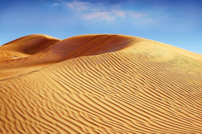 Desert Sand Dunes photo wallpaper-sandy landscape mural Africa savanna-XXL deser
