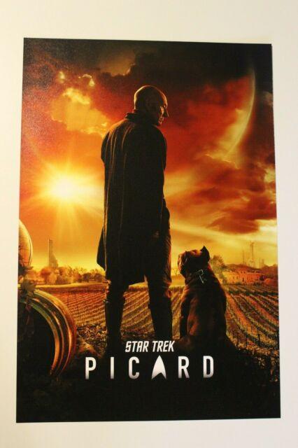 Star Trek Picard TV Show Art Silk Poster 12x18 24x36