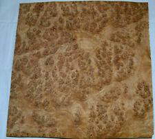 Oak Burl Raw Wood Veneer Sheet 125 X 12 Inches 142nd E9312 13