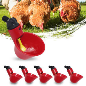 10X-Automatic-Poultry-Water-Drinking-Cup-Chicken-Bird-Hen-Plastic-Drinker-Feeder