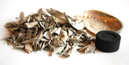 WHITE SAGE CHARCOAL ABALONE BURNING KIT FOR CLEANSING ENERGY CRYSTAL HEALING