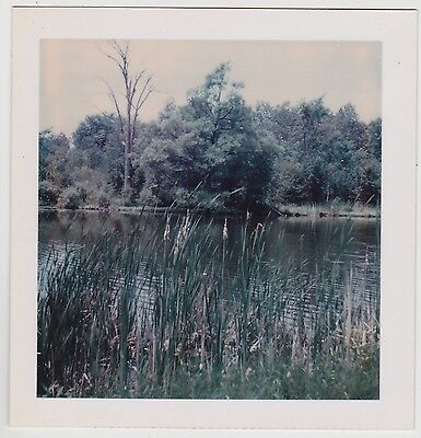 Square Vintage 70s Polaroid PHOTO River Behind Riverside Cemetery Lindsay Canada