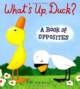 Whats-Up-Duck-A-Book-of-Opposites-Duck-amp-Goose-by-Tad-Hills