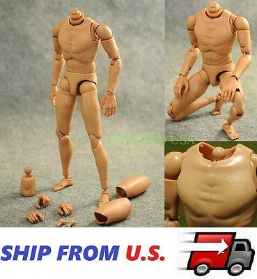 1//6 Narrow Shoulder Male Muscular Figure SUPER DURABLE For Hot Toys TTM18 USA