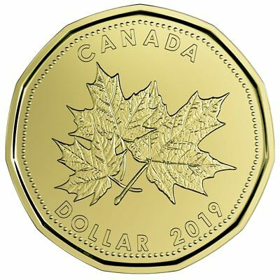 Canada 2019 Wedding Gift Coin Set with Special Loonie