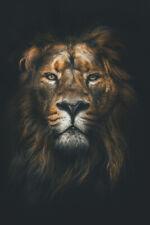 POSTER 24x36 Joe Exotic Animal Tiger King Art Wall Indoor Room Outdoor Poster
