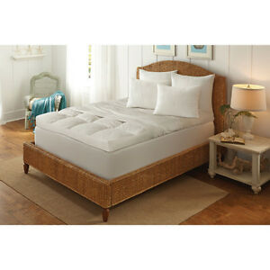 Dream Cloud 5-inch Ultimate Feather Bed with Removable Cover