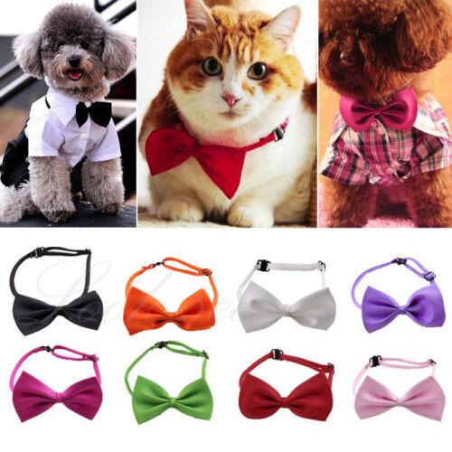 Adjustable Handsome Kid Pet Dog Cat Bow Tie Necktie Neck Collar Cute Clothes