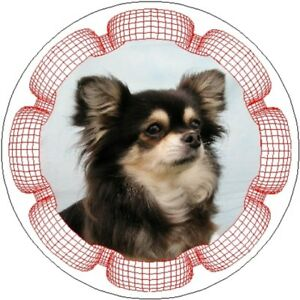 2-Long-Coat-Chihuahua-Car-Stickers-By-Starprint