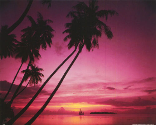 SAILBOAT IN SUNSET PHOTO NATURE #16-9107     RC46 F-R SMALL POSTER