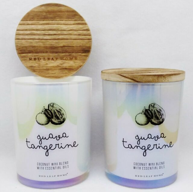2 Red Leaf Home GUAVA TANGERINE 2-Wick Scented Coconut Wax