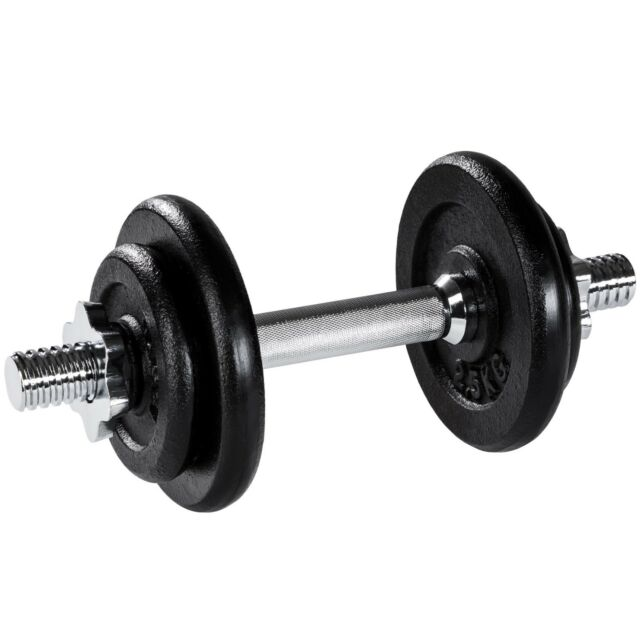 37f7b7f06 Dumbbell Set Lifting Weights Training Fitness Cast Iron Biceps Gym ...